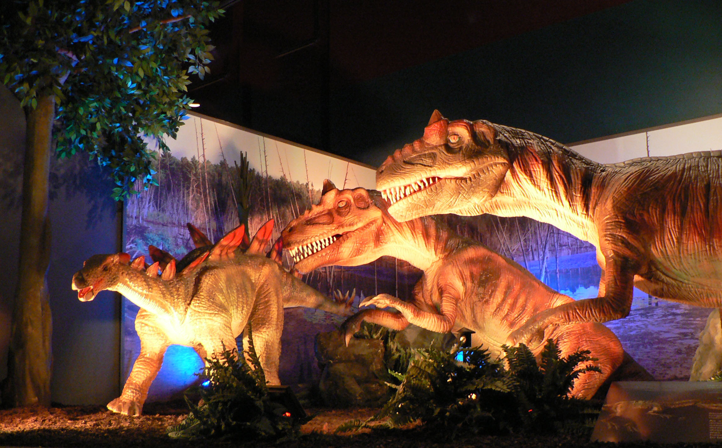 Dinosaurs in exhibit
