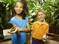 Girl and boy hold live butterflies in tropical exhibit. Give a unique holiday gift this year from Philly's Dinosaur Museum.