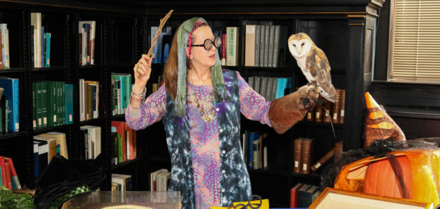 Embrace your inner wizard with fun, magical activities.