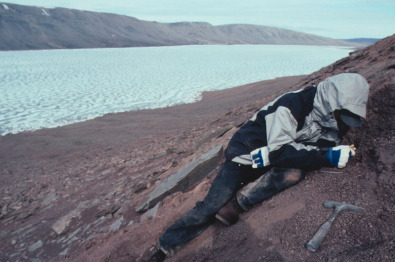 A paleontologist digging during one of Daeschler's previous Arctic trips in Nunavut in Canada.