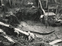 Inversand Fossil Pit, 1947