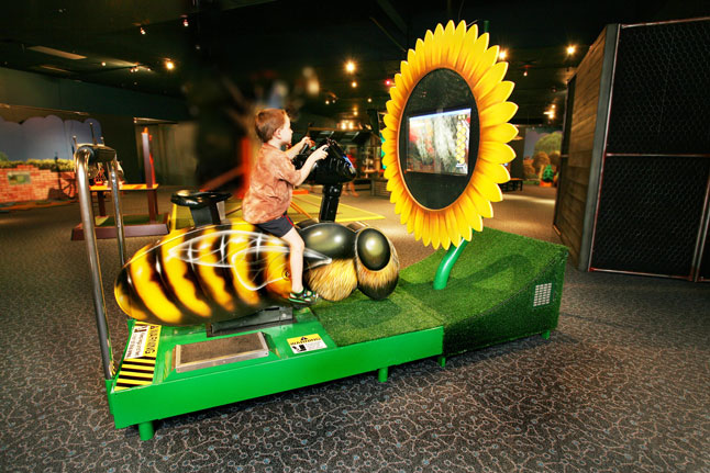 Ride the bee bike in the outdoor exhibit at the Academy