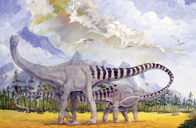 Poole illustration detail