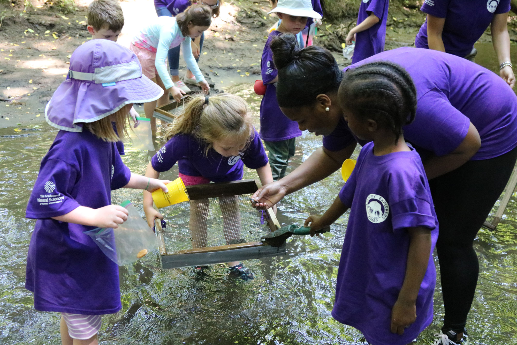 Academy of Natural Sciences summer campers search for fossils in a stream.