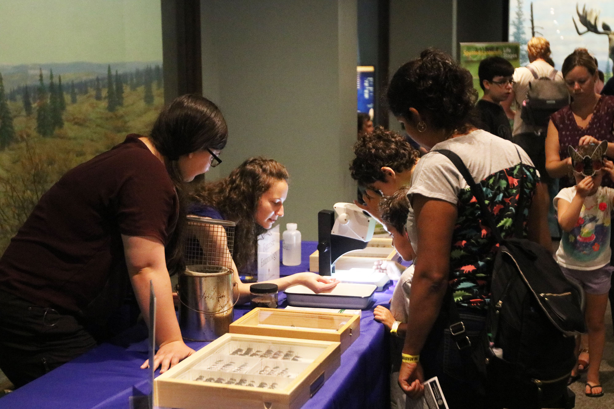 Jackie Garcia teaches visitors about forensic entomology at Bug Fest at the Academy of Natural Sciences