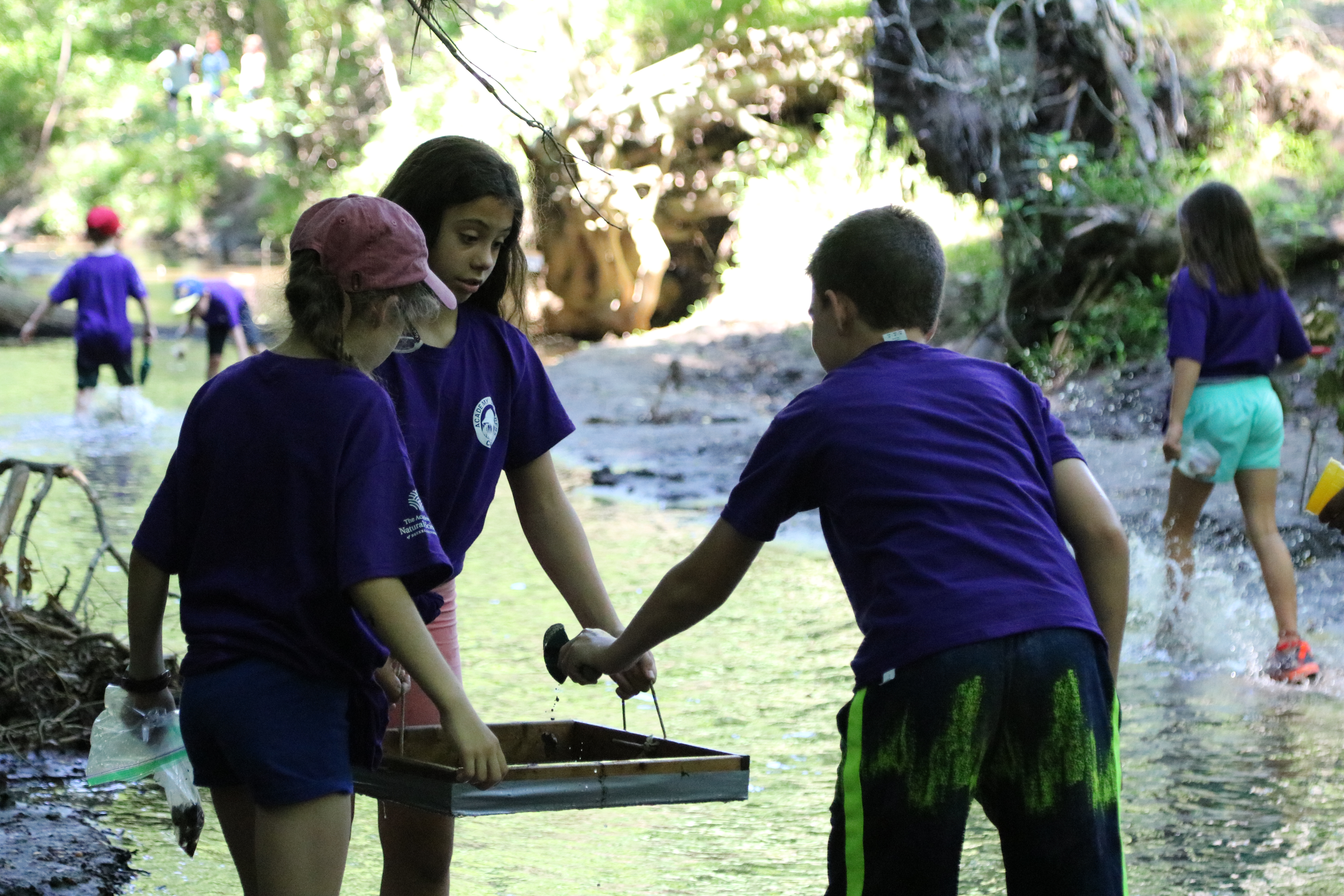 Teen Expedition Camp, Academy of Natural Sciences