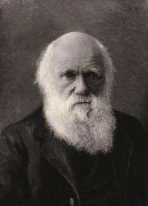 Charles Darwin. ANS Coll. 457.