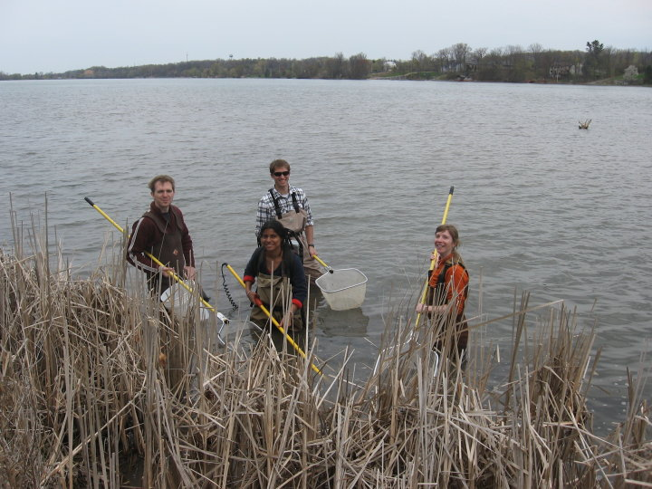 Four researchers from the Academy of Natural Sciences near the edge of a river on a gray day, reeds in front of them.