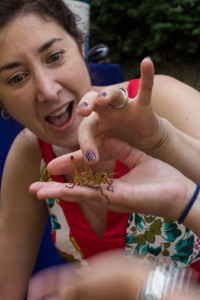 One of the hands-on activities at a past Bug Fest. Photo by Meredith Dolan/ANS.