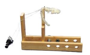 Snake Jaw Model Prototype
