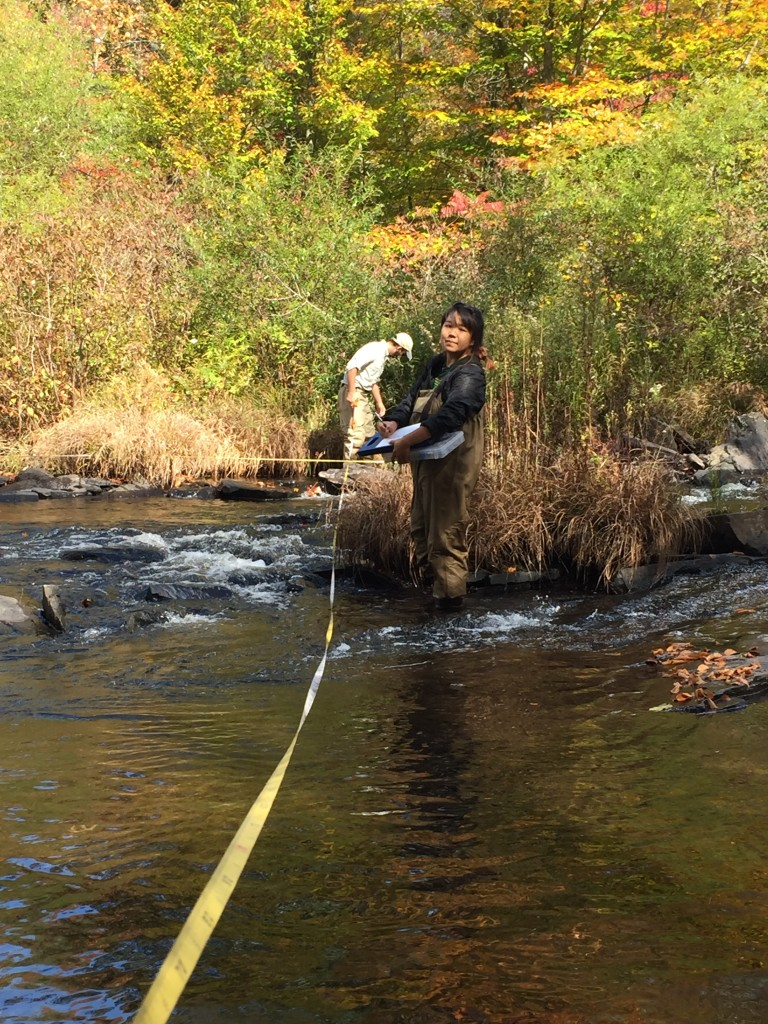 Academy Research Technician Amanda Chan and Staff Scientist II Sylvan Klein conduct a habitat assessment in the Lehigh River . Photo by Nikita Shah/ANS