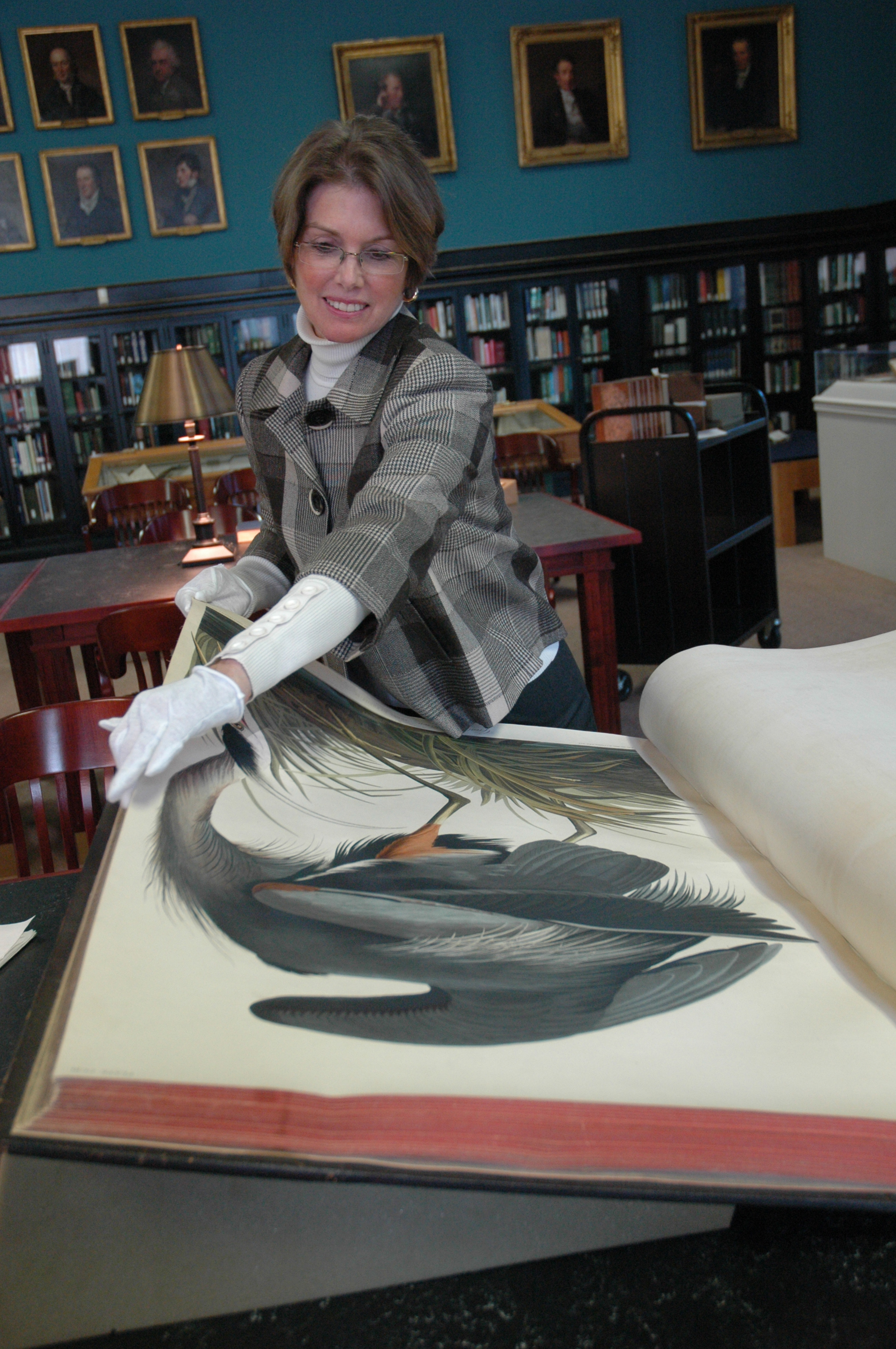 Every weekday at 3:15 p.m., museum visitors are invited to hear a short talk and observe the turning of a page of Audubon's Birds of North America elephant folio.