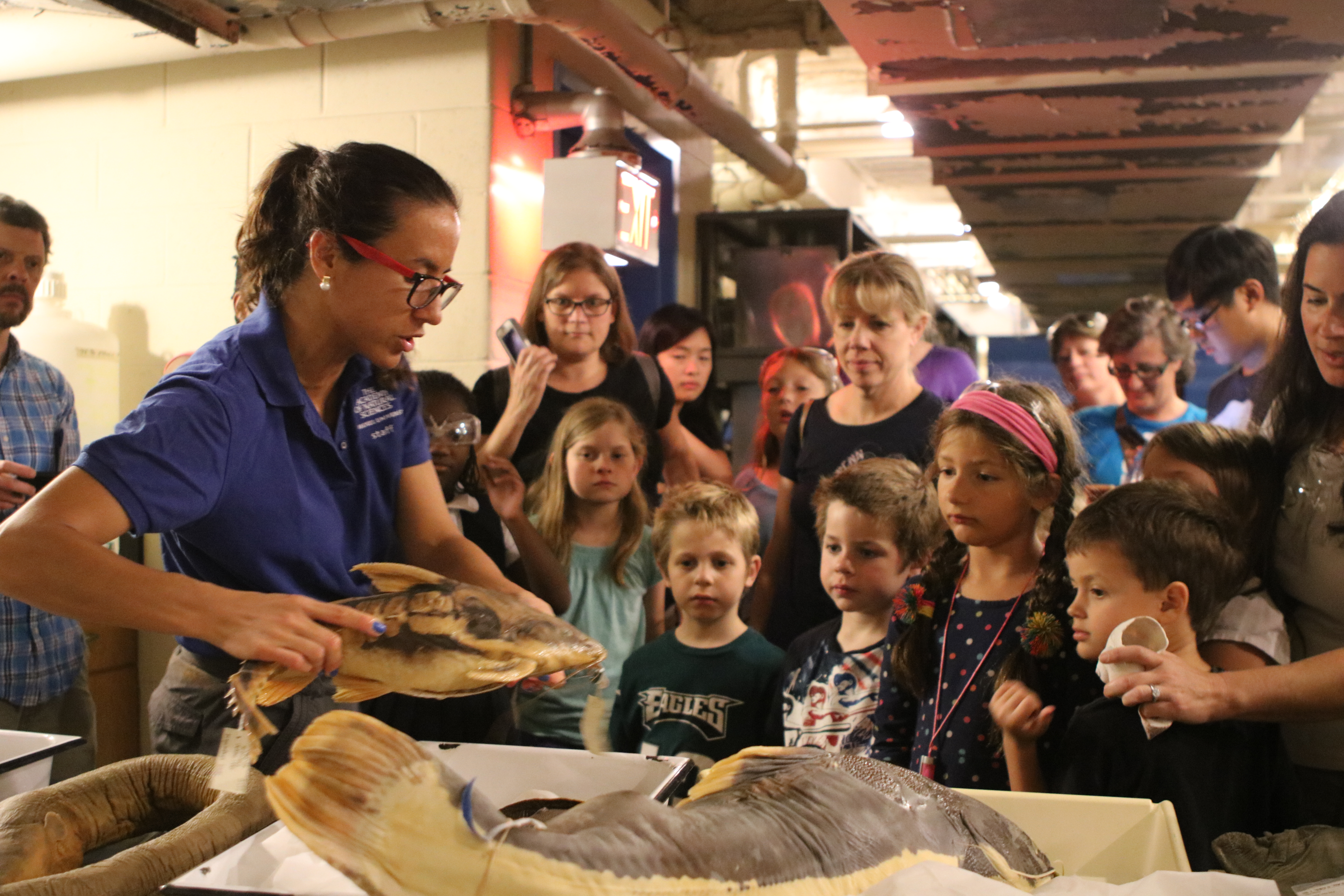 Arce Hernandez's favorite specimens from the Ichthyology Collection include a red-tail catfish, a big stingray, and a big electric eel.