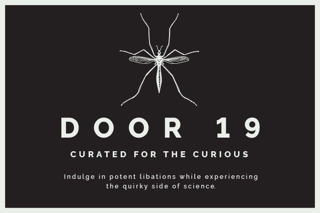Door 19: curated for the curious promo image