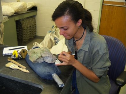 Woman works to prepare fossils