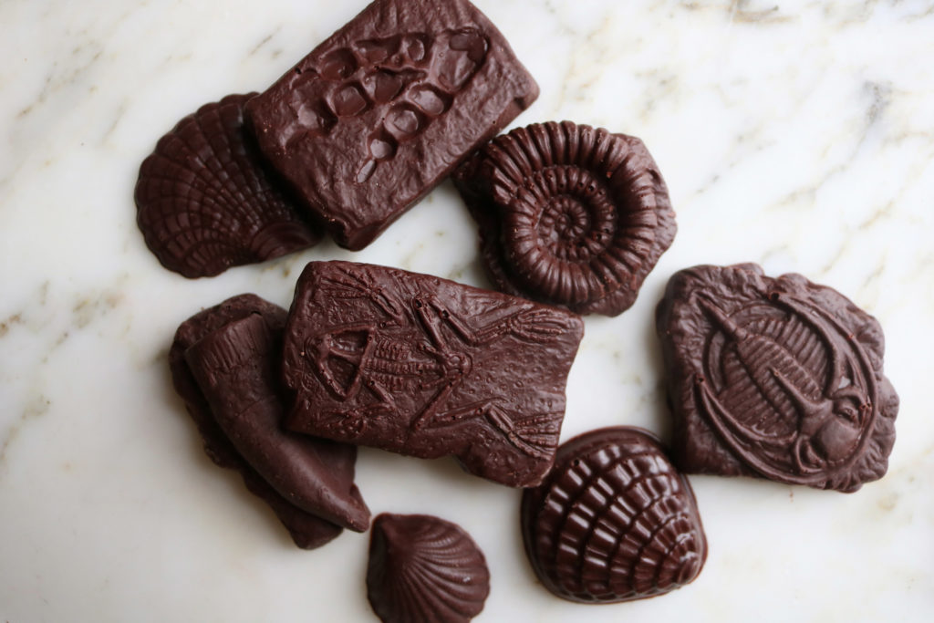 Shane Chocolate in shape of shells and fossils
