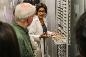 Behind-the-scenes in Malacology