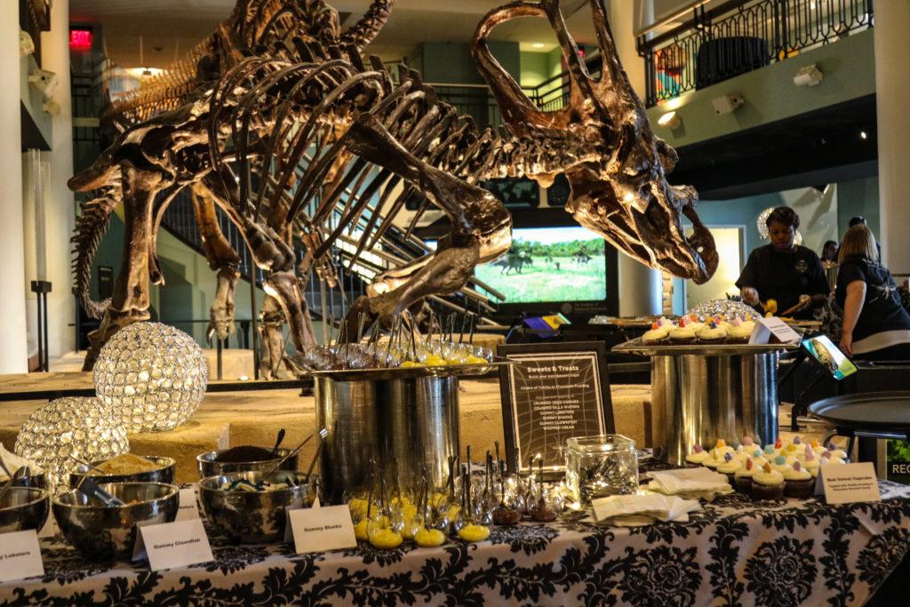 Desserts under dinosaur skeleton