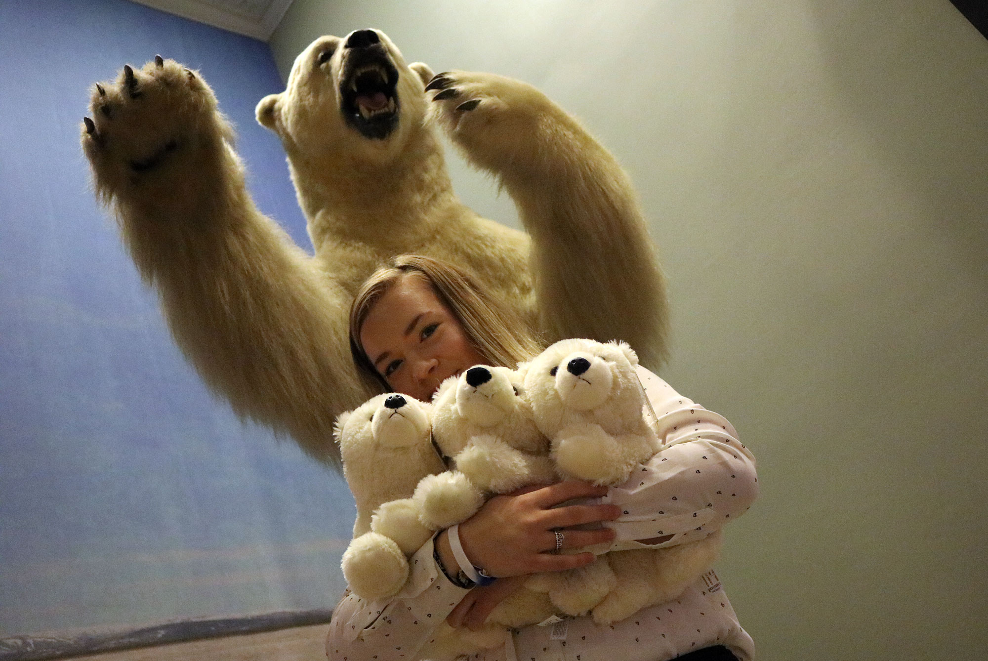 Young woman holds three plush polar bears under fierce-looking taxidermy polar bear