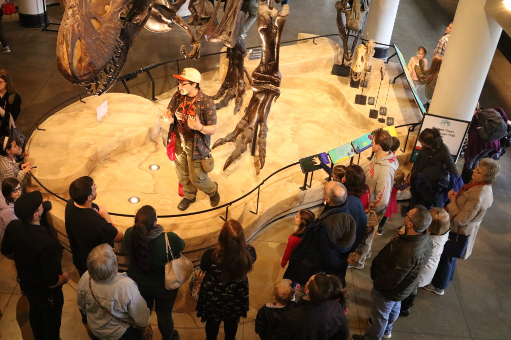 Educator stands under T. rex, group of adults surround her