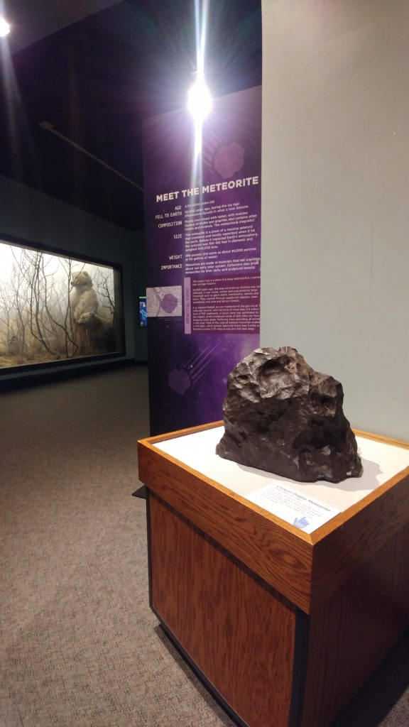 The famous meteorite sits amid the watchful eyes of the animals in North American Hall.