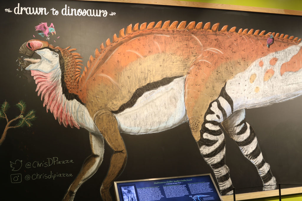 Hadrosaurus foulkii on large chalkboard