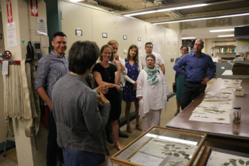 behind the scenes tour in botany, botanical specimens at right