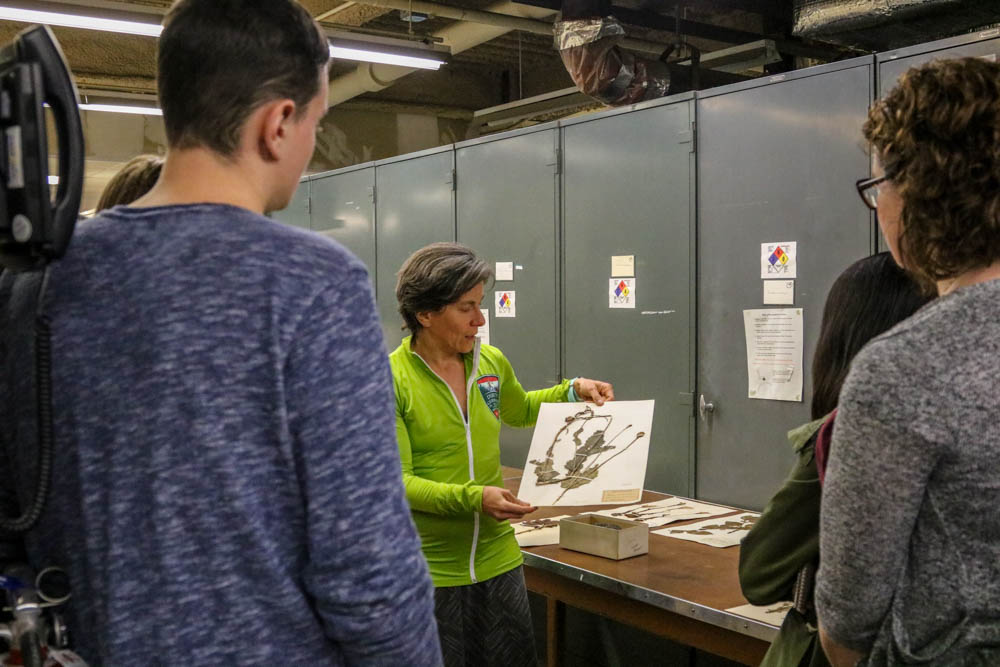 Woman in green jacket shows off herbarium specimen