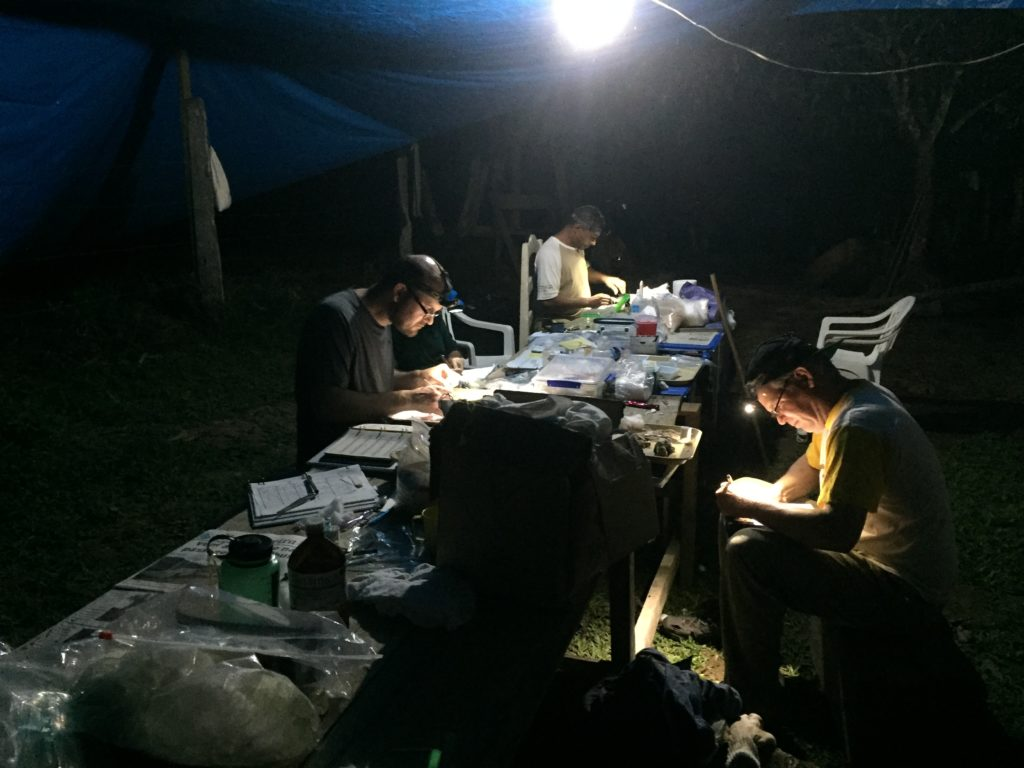 Researchers in the dark around a table, with headlamps working.