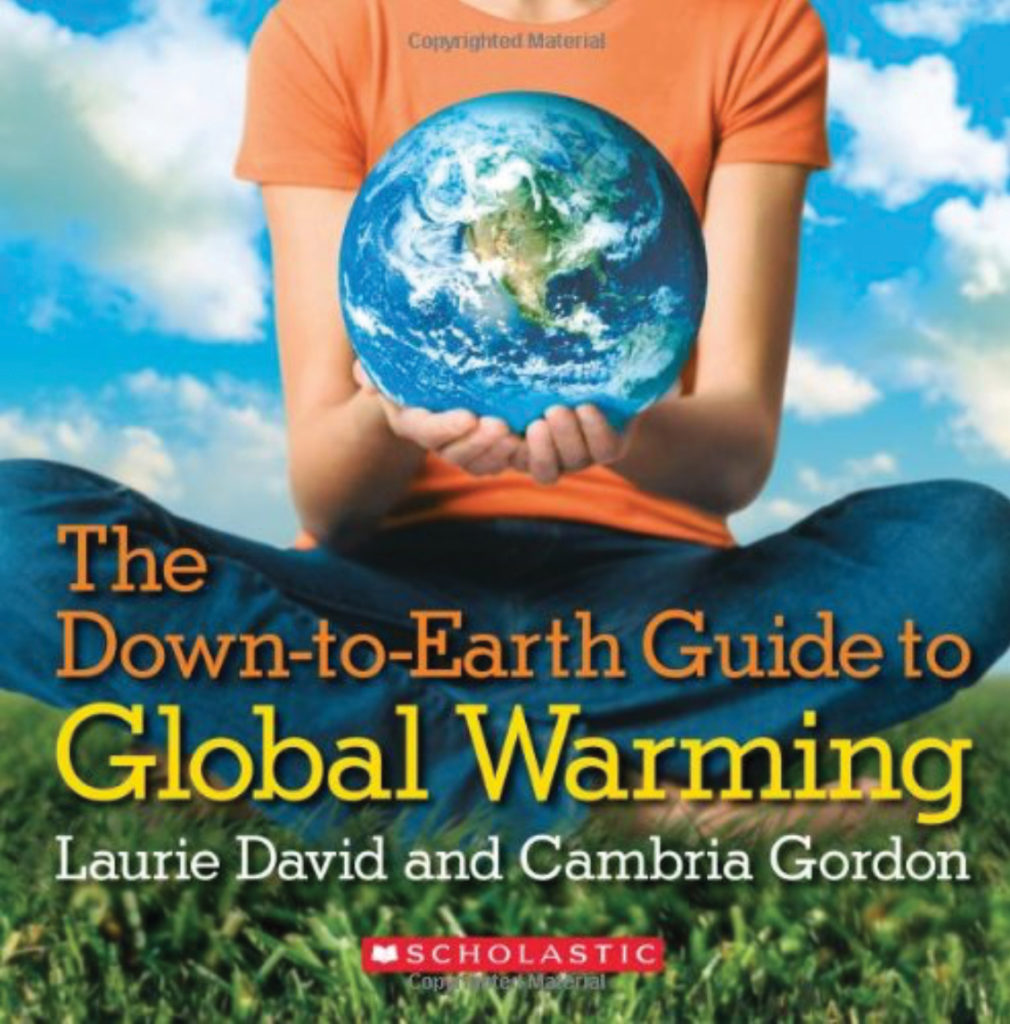 Book cover for The Down to Earth Guide to Global Warming