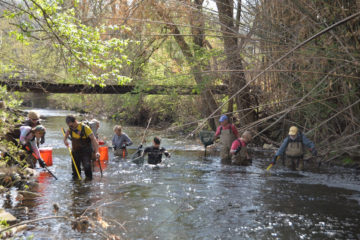 Group of scientists wading in stream