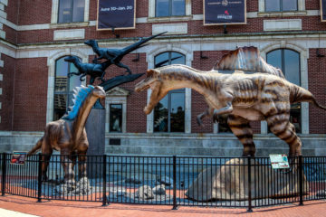 2 huge dinosaurs