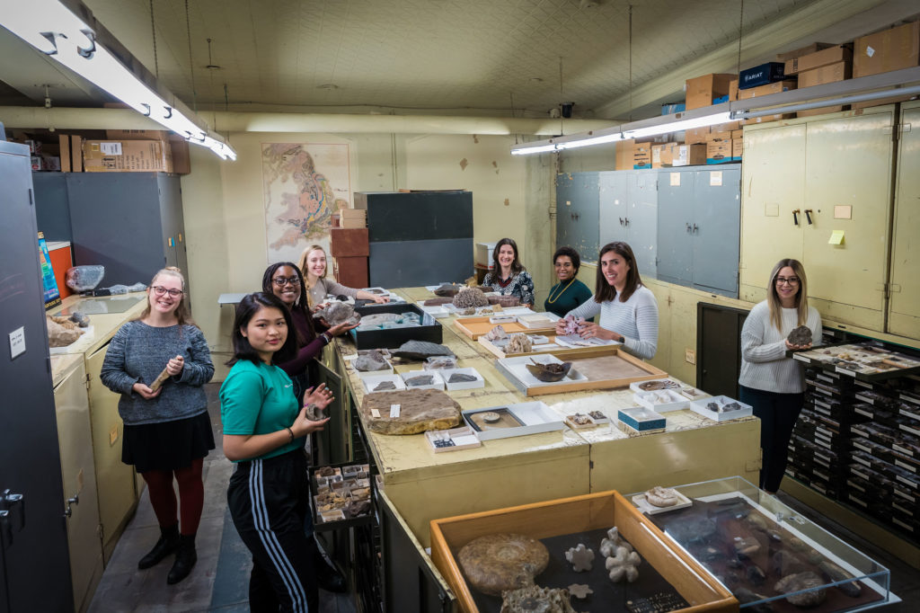Scientists working in Invertebrate Paleontology Collection