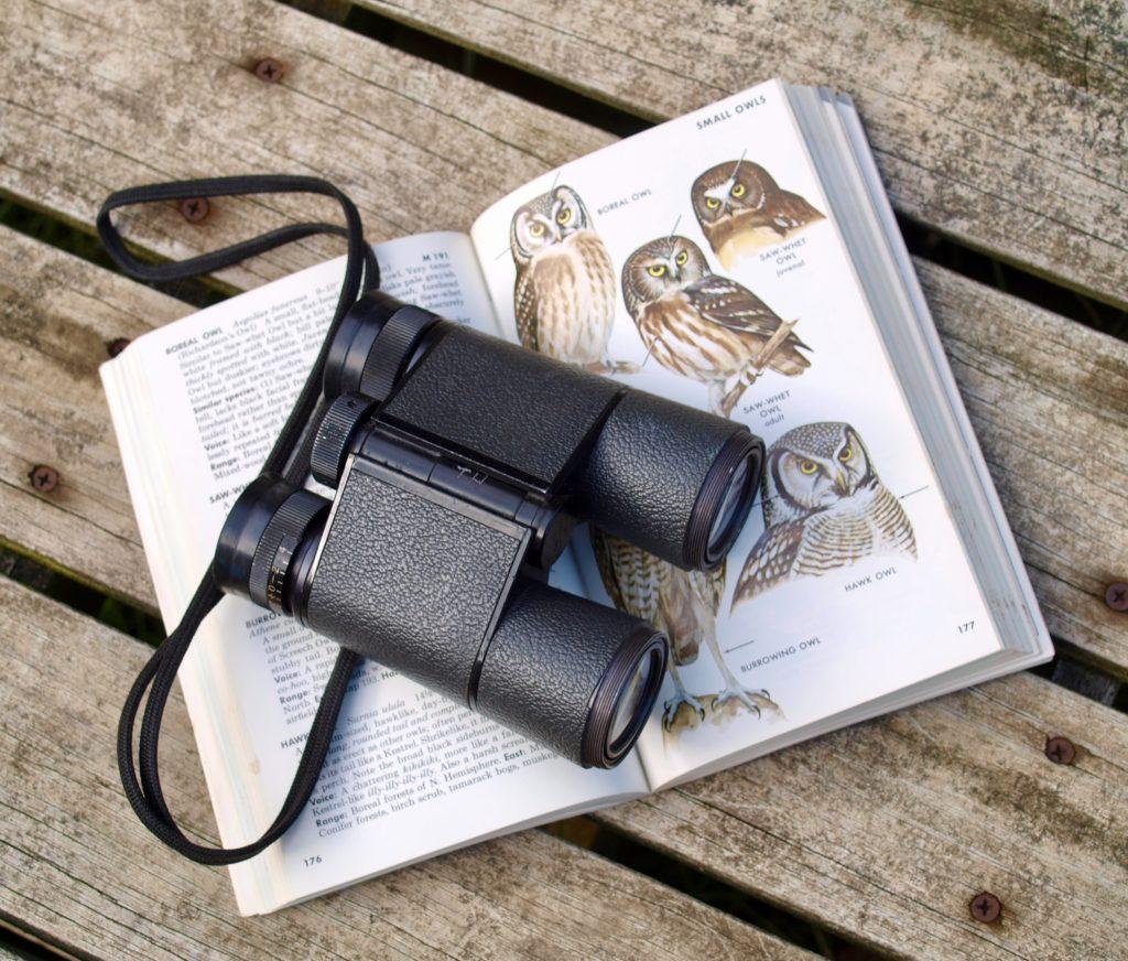 Binoculars with bird book