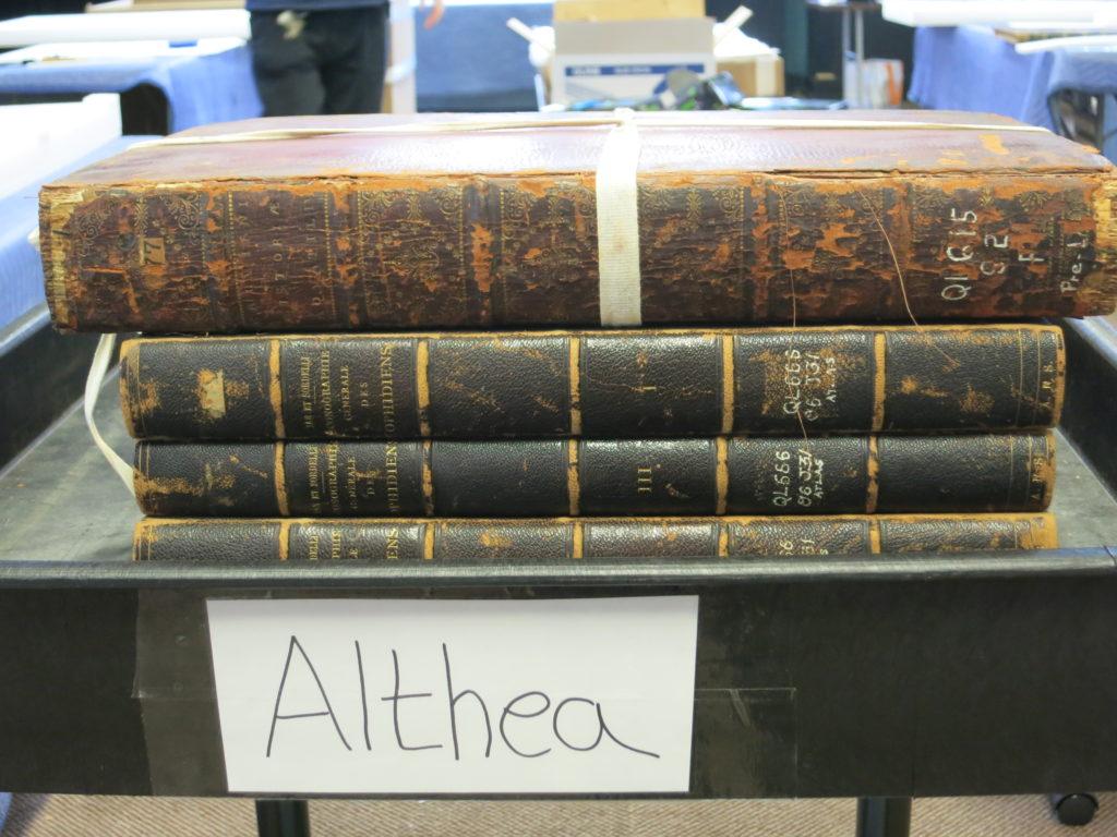 Stack of rare books
