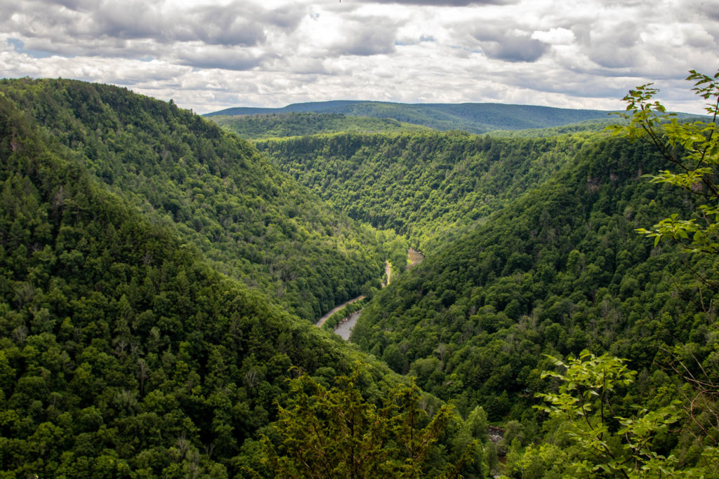 vista looking out over green trees and deep river gorge